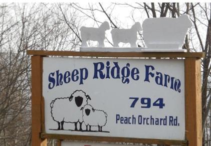 Sheep Ridge Farm Guest House