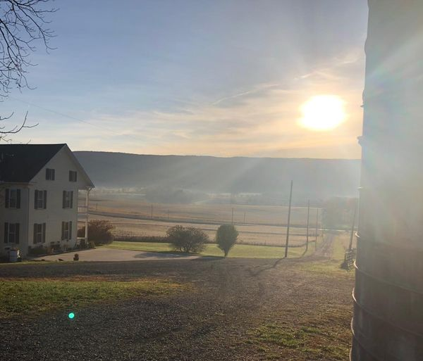 Stone Hollow Farm